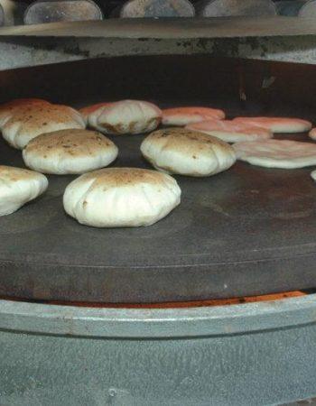 Falafel Gina Begin