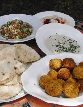 Falafel Gina Shoken